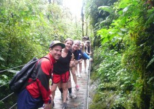 group in jungle